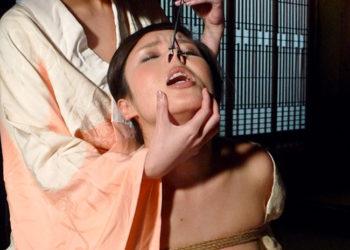 【鼻フックエロ画像】鼻ぶっかけも余裕でされる豚鼻強制されてるSM画像!(18枚)